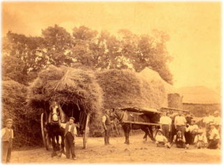 Agricultural Labourers on Manor Farm - Joshua Walker is the kneeling man
