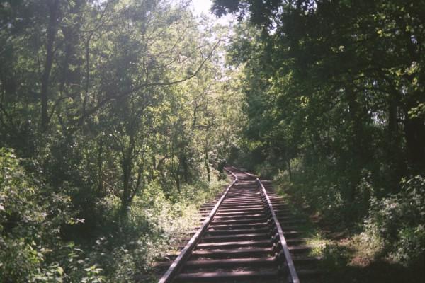 The tracks stop just around the corner | Robert Barton