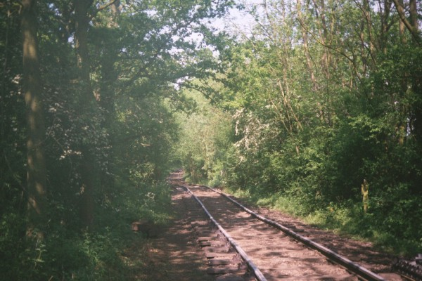 These railway tracks are made out of wood! | Robert Barton