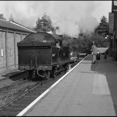 N7 tank locomotive reversing on to the siding at Buntingford Station, September 1958. | © Michael Covey-Crump