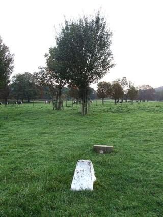 Boxmoor Common