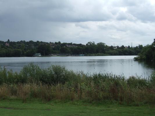 Aldenham Nature Trail | Devne M