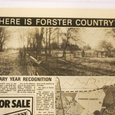 Article on the official recognition of Forster Country