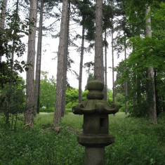 One of the many granite lanterns that litter the garden | Fiona MacDonald
