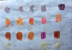 Traditional Dyes and Paints