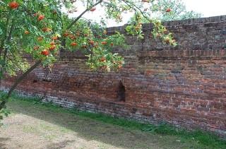 Part of the original Palace garden wall   Jane Ruffell