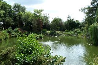 The Ornamental Pond at Cedars Park 2003   Jane Ruffell