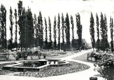 John Kennedy Memorial Gardens