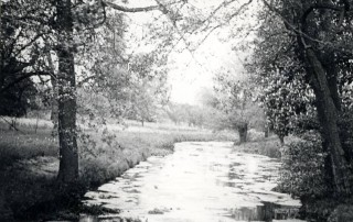 The River Beane in Watton C1935 | Hertfordshire Archives and Local Studies