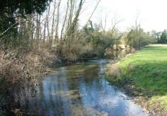 The River Mimram