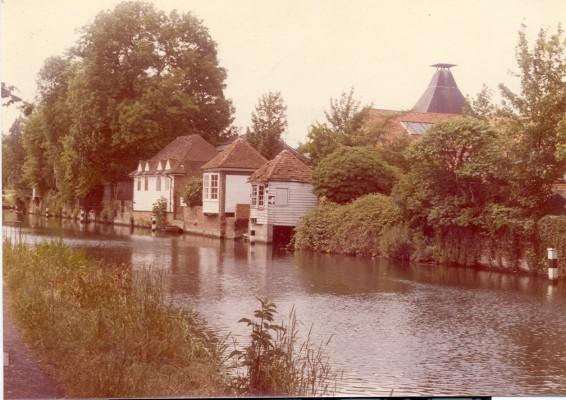 Gazebo 1981   Hertfordshire Archives and Local Studies