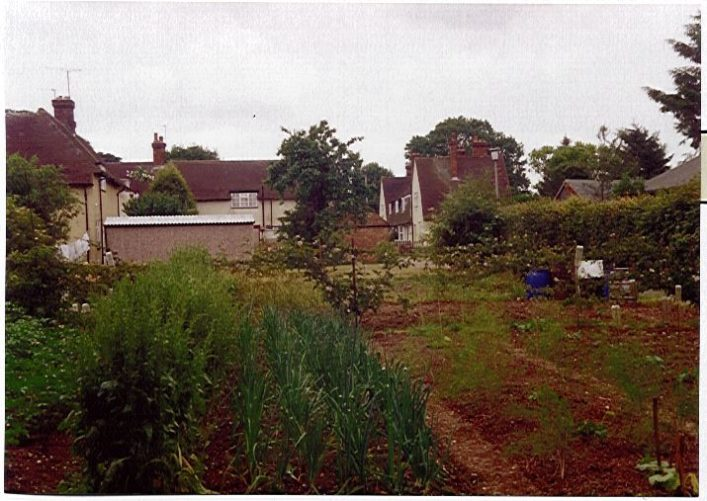 Allotments near Council Cottages