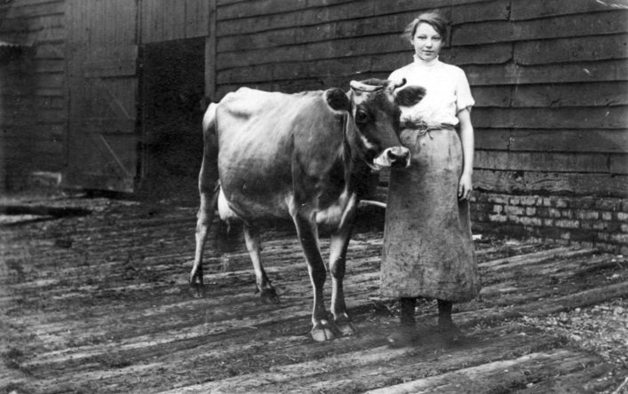 Bertha Groom (later Mrs Kaye) aged 17, milkmaid at Mardleybury Farm in the early 1900s | Woolmer Green Parish Council