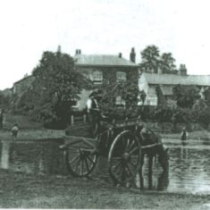 Horse and Cart at the Village pond, early 1900s | Woolmer Green Parish Council
