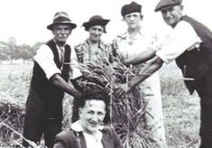A Harvest Scene