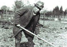 George Hopcroft