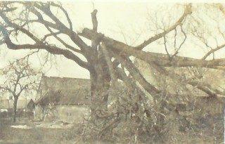 november-1916
