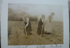 Louisa Puller, Suffragette