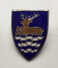 Badge awarded to best camper