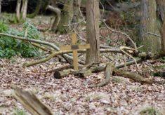 Aldbury Valetta memorial