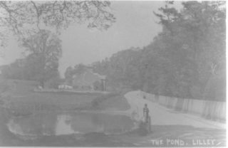 The Pond, Lilley | Hertfordshire Archives & Local Studies