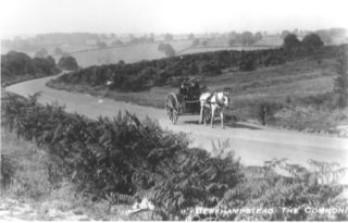 The Common, Berkhampsted | Hertfordshire Archives & Local Studies