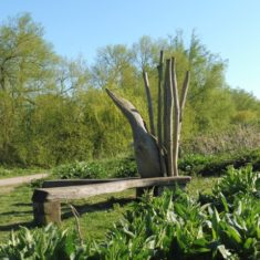 The Bittern wildlife bench. Hope you can spot the birdie | Colin Wilson