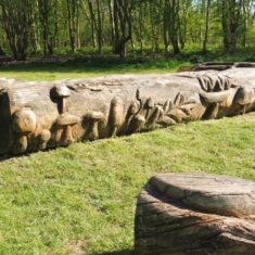 One of the carved tree trunks, part of The Henge. A taste of things to come | Colin Wilson