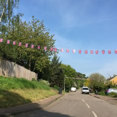 Bunting on Watermill Lane 6th May 2020 | Geoff Cordingley