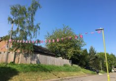 Celebrations in Watermill Lane & Rib Vale, Bengeo