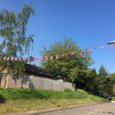 Bunting on Rib Vale, 4th May 2020 | Geoff Cordingley