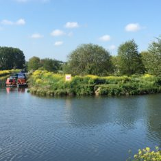 Confluence of two branches of the River Lea taken from lower Ware Park path, 6th May 2020 | Geoff Cordingley