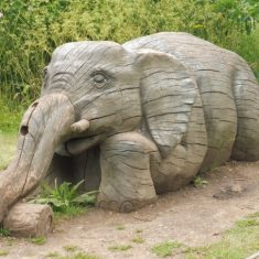 The wooden elephant, a reminder of the menagerie. Jun 2020 | Colin Wilson
