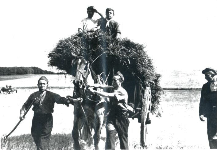 Italian POWs from Royston Camp at Harvest | Hertfordshire Archives and Local Studies