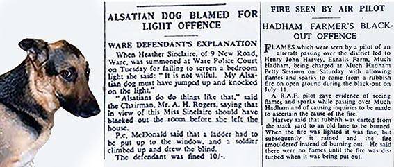 Newspaper article about fines | HALS (ref Hertfordshire Mercury 23 Aug 1940)