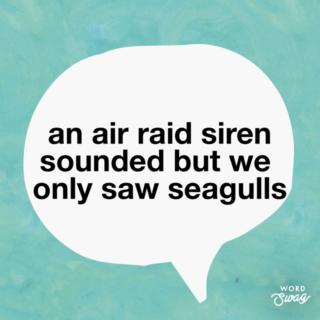 Seagulls quote