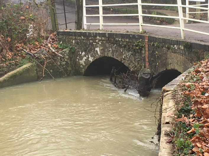River Rib squeezing through two arched, narrow, stone bridge under Ware Park Road after heavy rain.
