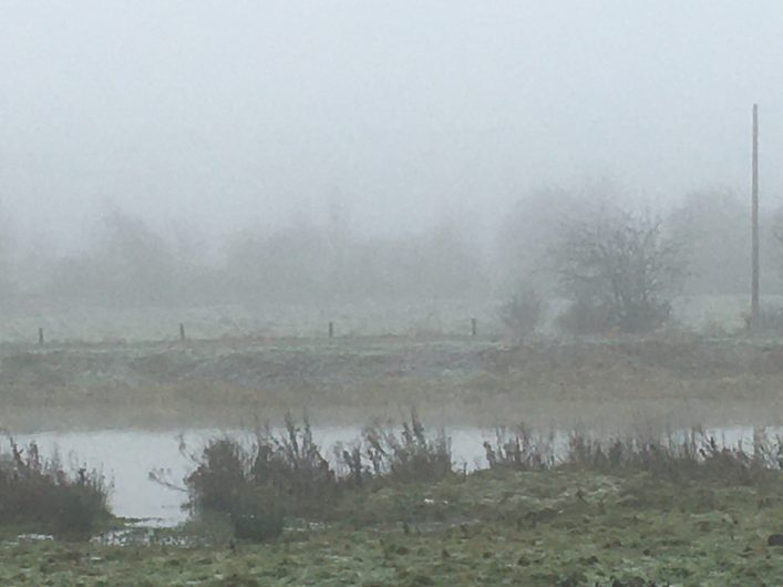 View across River Lee and the tow path to the fields and trees beyond the river towards Ware Road. but shrouded in mist.