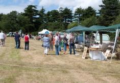 Wigginton Festival 2009