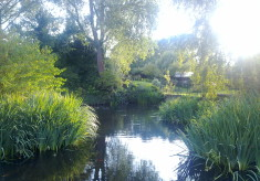 My favourite place in Hertfordshire