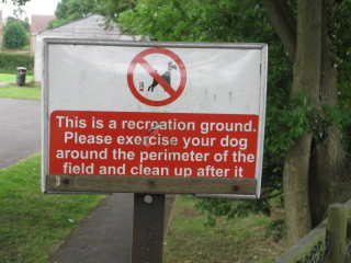 No dogs | By Richard Tregoning