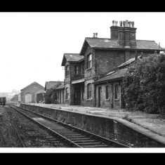 London Road Station, St Albans, in the 1950s, looking west. Passenger services have ceased and the platform is overgrown. | © St Albans Museums; given by Watford Museum
