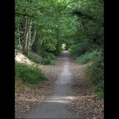 The descent from Roundwood to Harpenden. | July 2010, © St Albans Museums