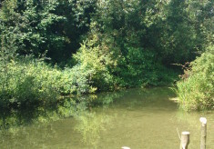 My Favourite place In Hertfordshire!