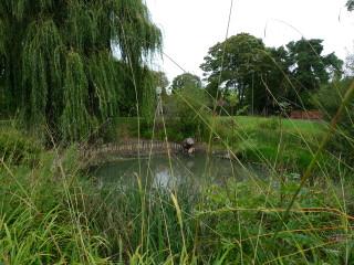 weston pond | harriet
