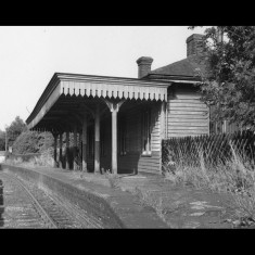 Redbourn Station, abandoned and overgrown, in 1955. | Lent by Ken Allen