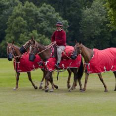 Hertfordshire Polo Club - The MorrCo Cup | Bill Martin