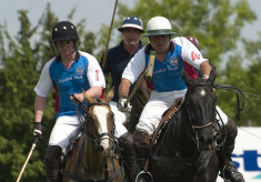 Hertfordshire Polo Club