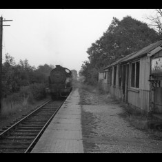 N7 tank engine without freight passing the derelict Hill End Halt, east of St Albans, November 1959. | © Michael Covey-Crump