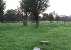 Last highwayman hung in Hemel Hempstead